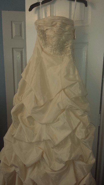 Texas Beautiful David S Bridal Gown Sizes 2 4